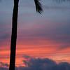 Hawaii & Marathon 12 2010 :