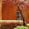 New Mexico 5 09 : Santa Fe, Canyon Rd, Bandalier Nat. Park, Taos