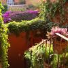 San Miguel de Allende 10 2012 :