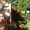 Vacation Rental: La Tranquila Casa : 1 bdrm private guest house in Los Angeles, CA.   2 miles from Venice Beach.